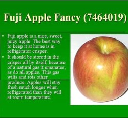 Fuji Apples 88 ct